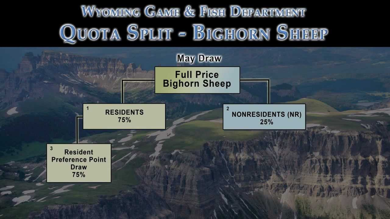 Wyoming bighorn sheep license draw youtube for Wyoming game and fish license