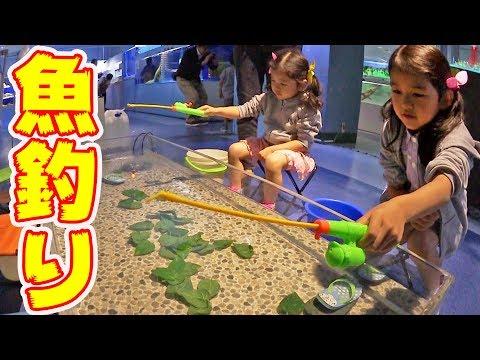 ●普段遊び●東京タワー水族館♡魚釣り、人食いナマズ、ワニガメ…まーちゃん【6歳】おーちゃん【3歳】#509