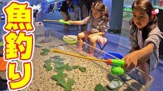 ●普段遊び●東京タワー水族館♡魚釣り、人食いナマズ、ワニガメ…まーちゃん【6歳】おーちゃん【3歳】#509 thumbnail