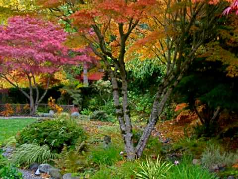 Pacific Northwest Bellingham Japanese Youtube