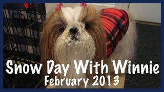 Snow Day With Winnie (february 2013)