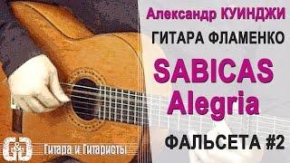Испанская гитара фламенко  Sabicas Alegria  #2  Не Дидюля