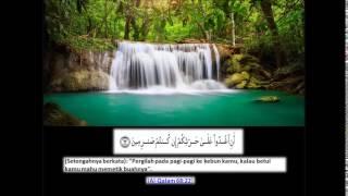 Surah Al Qalam سورة القلم Ustaz nafis yaakub