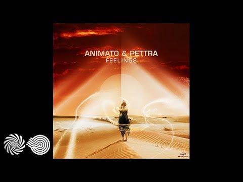 Animato & Pettra - Feelings