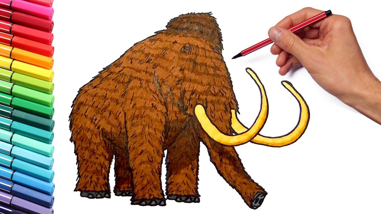 drawing and coloring a mammoth how to draw prehistoric animals