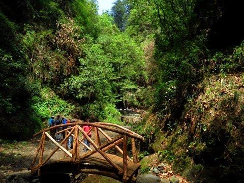 Himalayan Trails !! Trekking in the Banjar Valley Part-1
