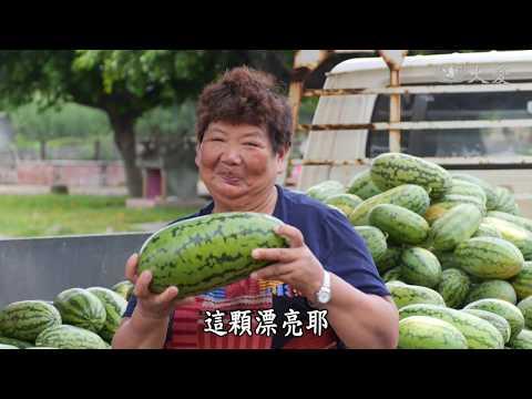 【農夫與他的田】20181207 - 土香小農有你真好