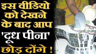 शिवलिंग पर दूध क्यों चढ़ाया जाता है ? | Why We Offer Milk to Lord Shiva |Reveal History and Mythology