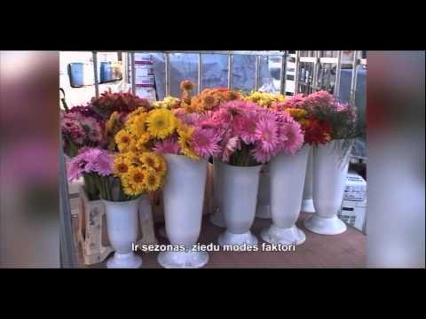 Оптовая цветочная база GRAND ROSE