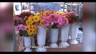 видео Доставка свежесрезанных цветов оптом из Китая