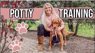 How We Potty Trained Our Puppy | How We Bell Trained Her