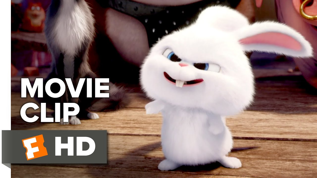 Cute Bunny Wallpaper Hd The Secret Life Of Pets Movie Clip Accident Mid Laugh