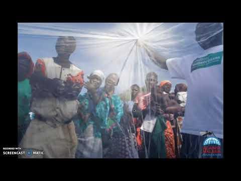 The Against Malaria Foundation