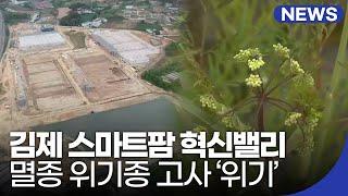김제 스마트팜 혁신밸리 멸종 위기종 고사 '위기' / …