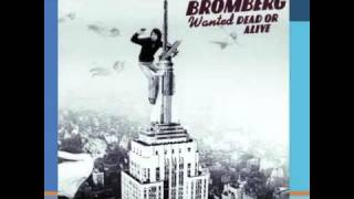 David Bromberg ~ Someone Else
