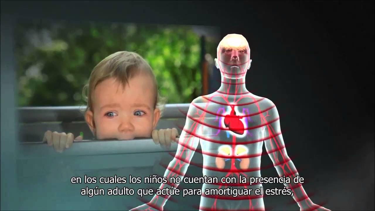 """Las interacciones amorosas entre el bebé y su cuidador construyen el """"Cerebro Social"""""""