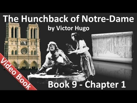 Book 09 - Chapter 1 - The Hunchback of Notre Dame by Victor Hugo - Delirium