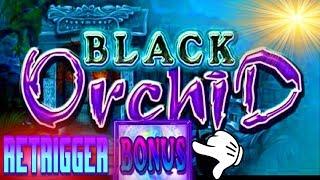 ★BLACK ORCHID★RETRIGGER BONUS★ WIN AT SEA★BRILLIANCE OF THE SEAS!!