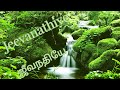 Download Jeevanathiye enthan ullathil | Pas.Alex Ocheri | Tamil christian song MP3 song and Music Video