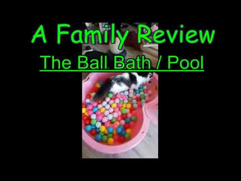 BALL BATH / BALL POOL REVIEW, PART 1, BEST INTERACTIVE CAT TOY, FUNNY VIDEO