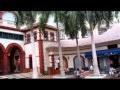 № 265 США Гостиница Флорида  GAYLORD PALM HOTEL