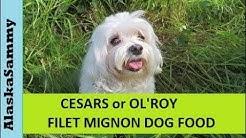 Cesar or Old Roy Dog Food Filet Mignon Taste test