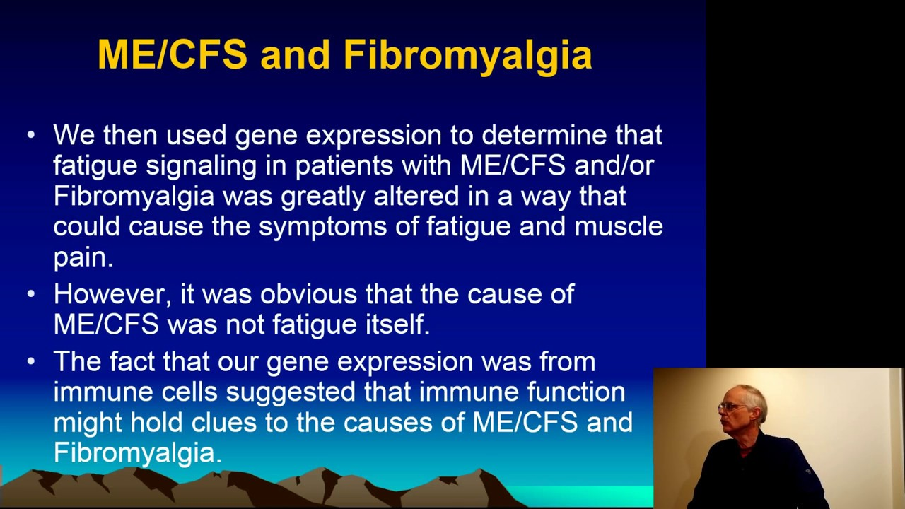 Genes, Mitochondria, Autoimmunity and Chronic Fatigue