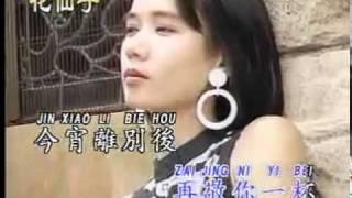 卡拉OK歌伴舞 - VOL 1 - 何日君再來 - He Ri Jun Zai Lai