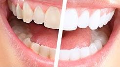 Dentists Avon Park, FL