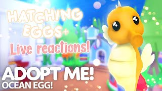 NEW ADOPT ME OCEAN EGG UPDATE!!!     Live reactions!