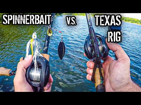 Spinnerbait VS Texas Rig | Fall Bank Fishing For Bass