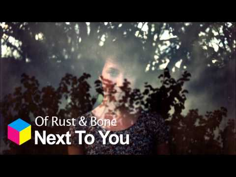 Of Rust & Bone - Next To You