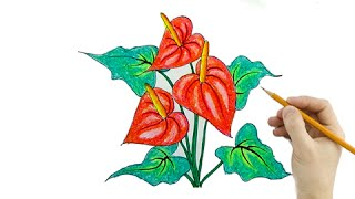 Vẽ Tranh Hoa Hồng Môn - (How To Draw Anthurium Flowers)