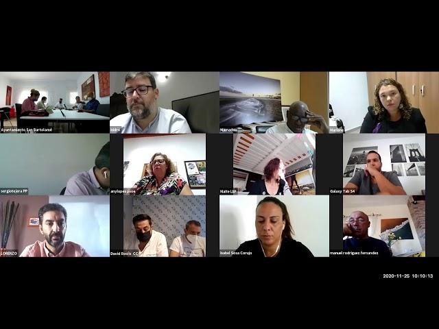Pleno Ordinario 25 11 2020    Videoconferencia