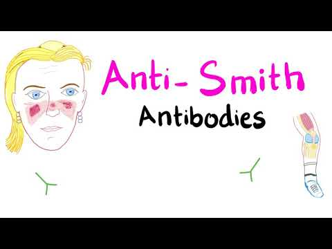 Anti-Smith (anti-Sm) Antibodies; Systemic Lupus Erythematosus