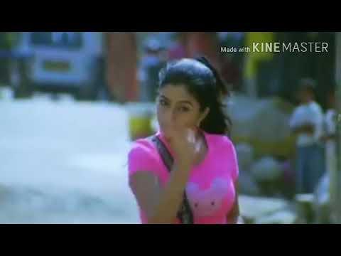 Shamna kasim hot boobs & navel show edit|√cellLoads