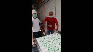 YX300 JELLY CANDY PRODUCTION LINE, GUMMY CANDY PROCESSING LINE
