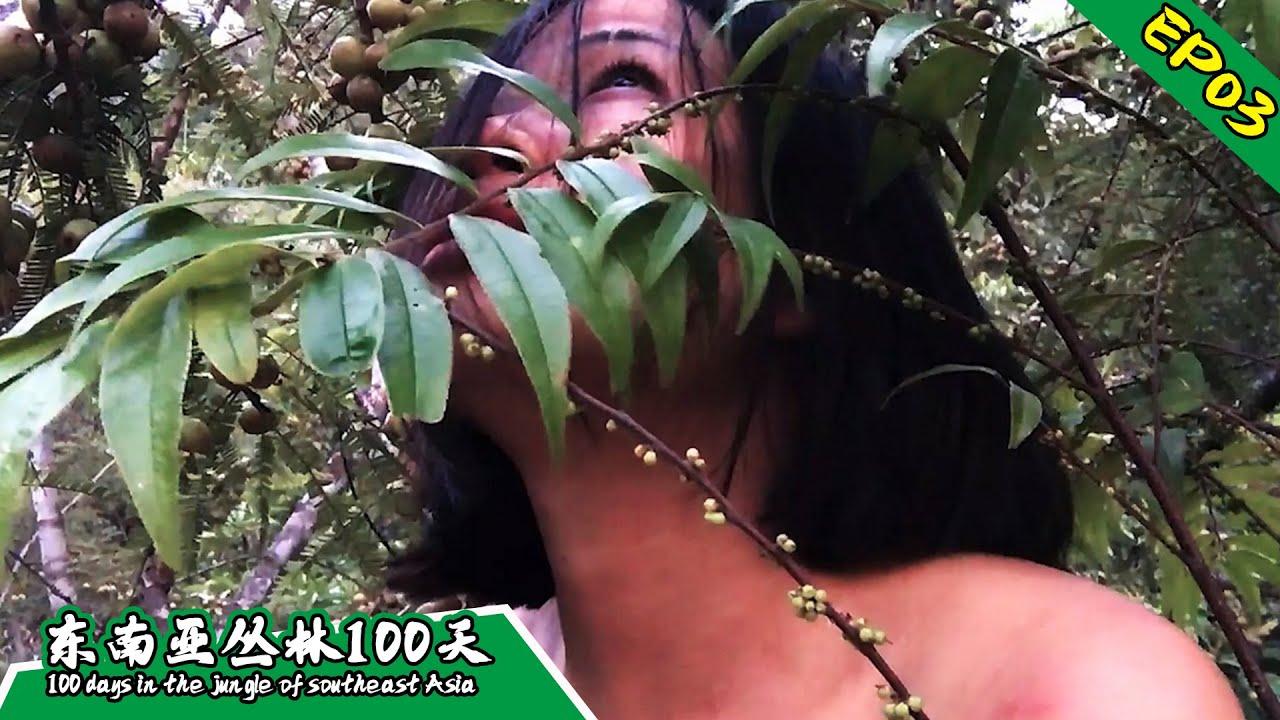 Download EP03 把自己绑在树梢上睡觉,防止野兽攻击丨挑战丛林生存100天 DAY 1