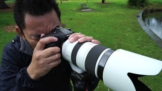 Sony a77 Mark II Review | John Sison