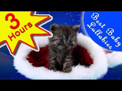 🎅 Songs To Put A Ba To Sleep Lyrics Ba Lulla Lullabies Bedtime JINGLE BELLS  CHRISTMAS MUSIC