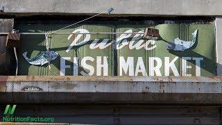 Biomarker příjmu ryb