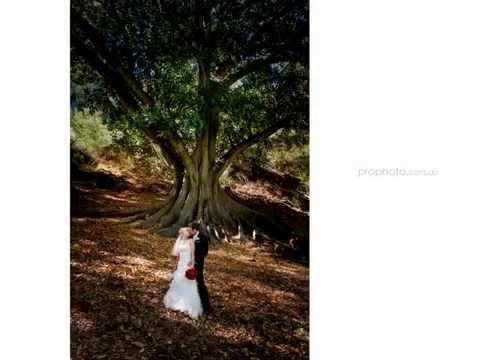 wedding-photographer-perth- -all-saints-church-&-mercure-hotel,-perth---karen-+-brett
