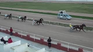 Vidéo de la course PMU PREMI FANDANGUILLO
