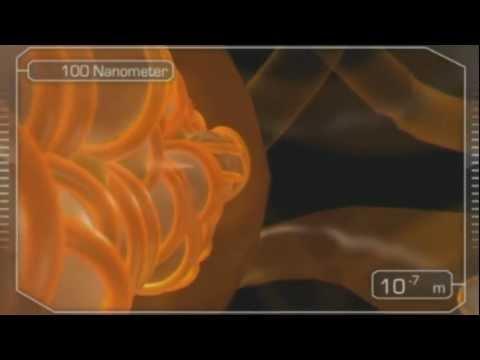 Solar Fields - Unite (Video 2011)