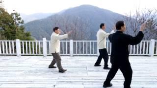 鄭子Cheng Man Ching太極拳謝昭隆師父演示楊氏罕傳左右雙邊精簡功架第二段影片