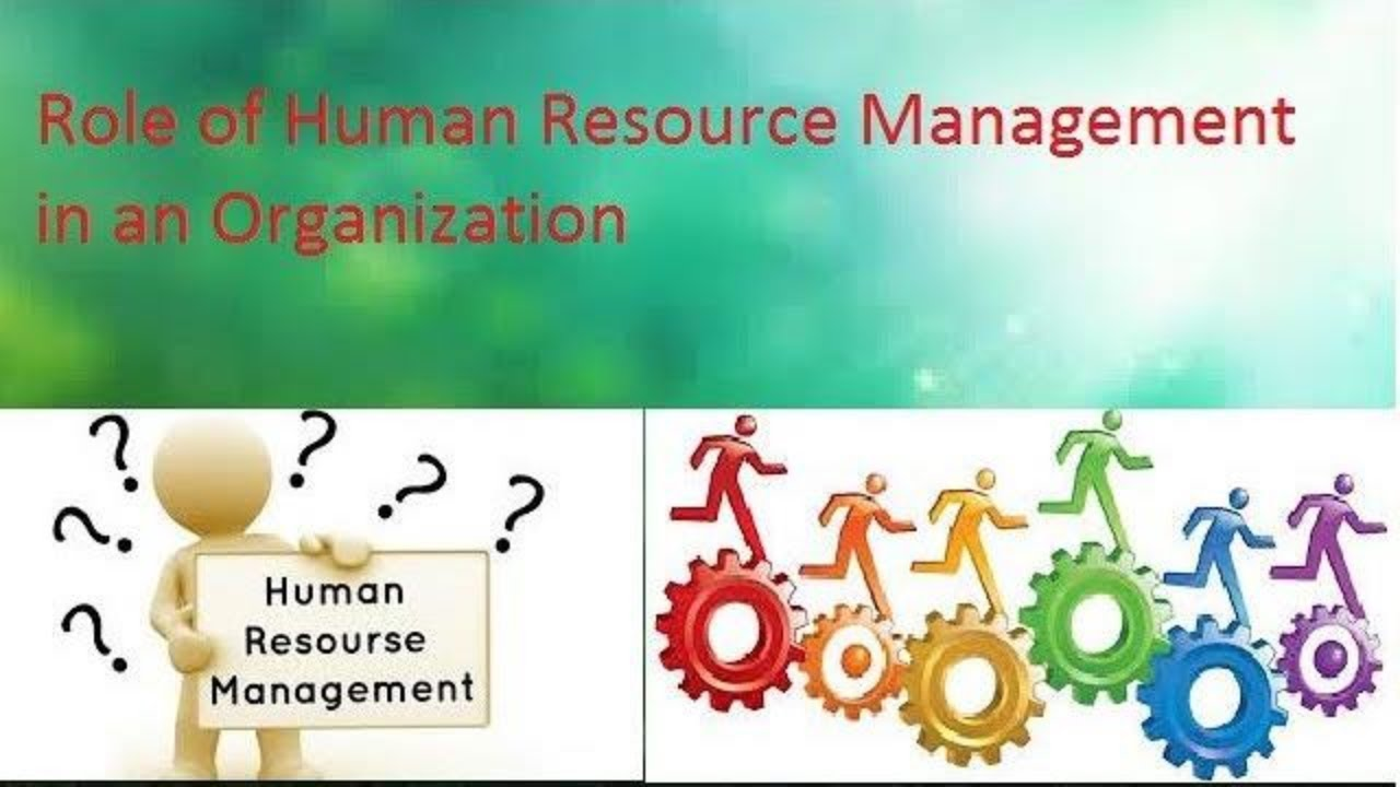 role of human resource management in Human resource management, erven says, is a process that can be broken down into specific activities: job analysis, writing job descriptions, hiring, orientation, training, employer/employee interactions, performance appraisal, compensation, and discipline.