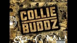 Collie Buddz - Blind To You