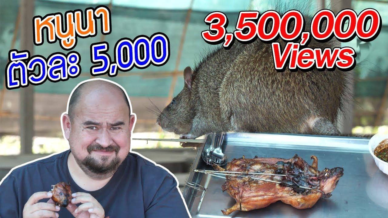 หนูนา ตัวละ 5,000 | Field rat 5,000 Baht