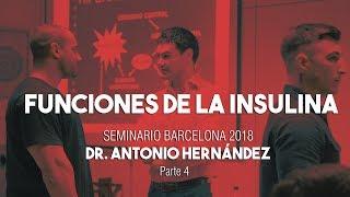 FUNCIONES DE LA INSULINA | Seminario Dr. Antonio Hernández Barcelona Parte 4