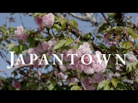 """Japantown San Jose, CA"" Where Tradition and Progress Meet"